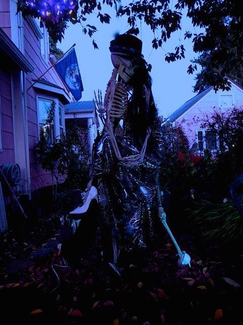 tango, skeletons