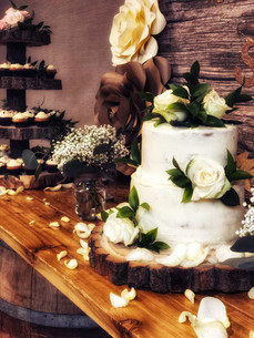 Naked Bridal Shower Cake