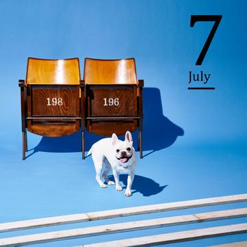 7月 2020イオンペットカレンダー