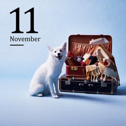 11月 2020イオンペットカレンダー