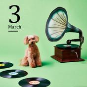 3月 2020イオンペットカレンダー