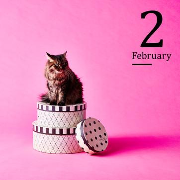 2月 2020イオンペットカレンダー
