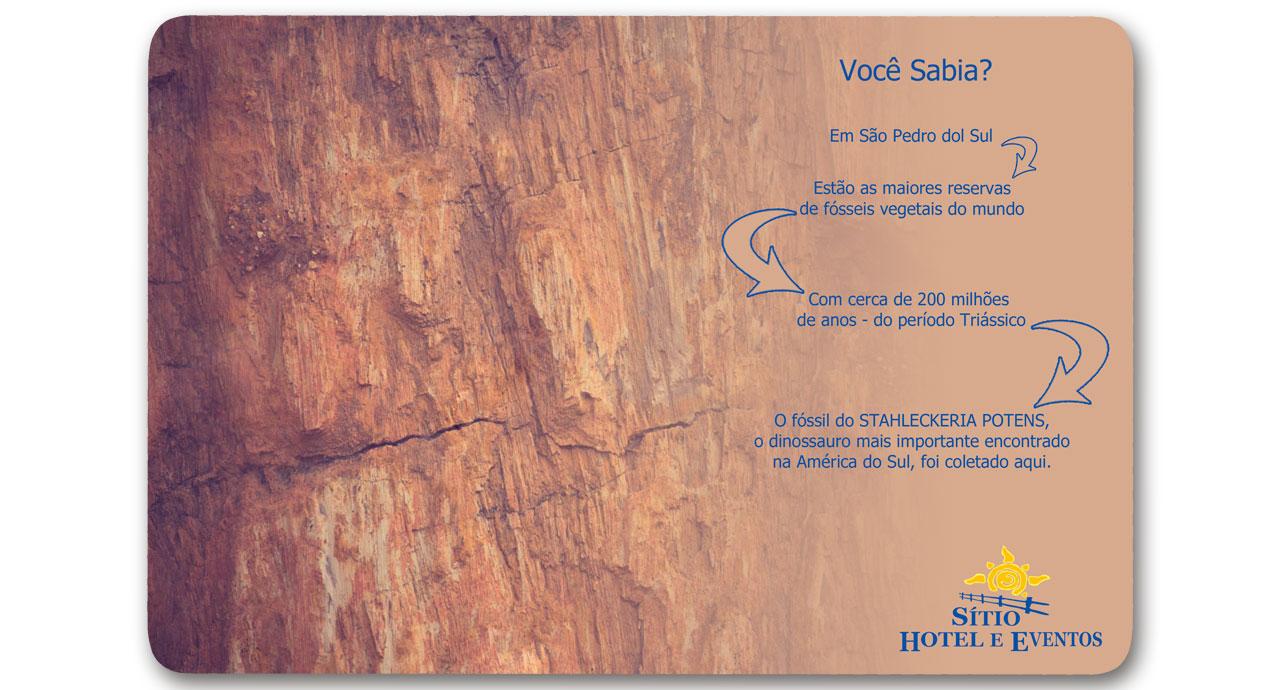 Fósseis Vegetais