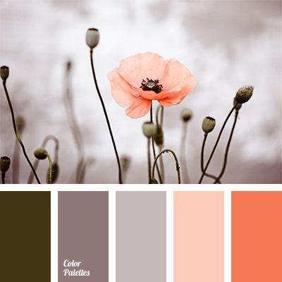 Olive, Grey, & Peach