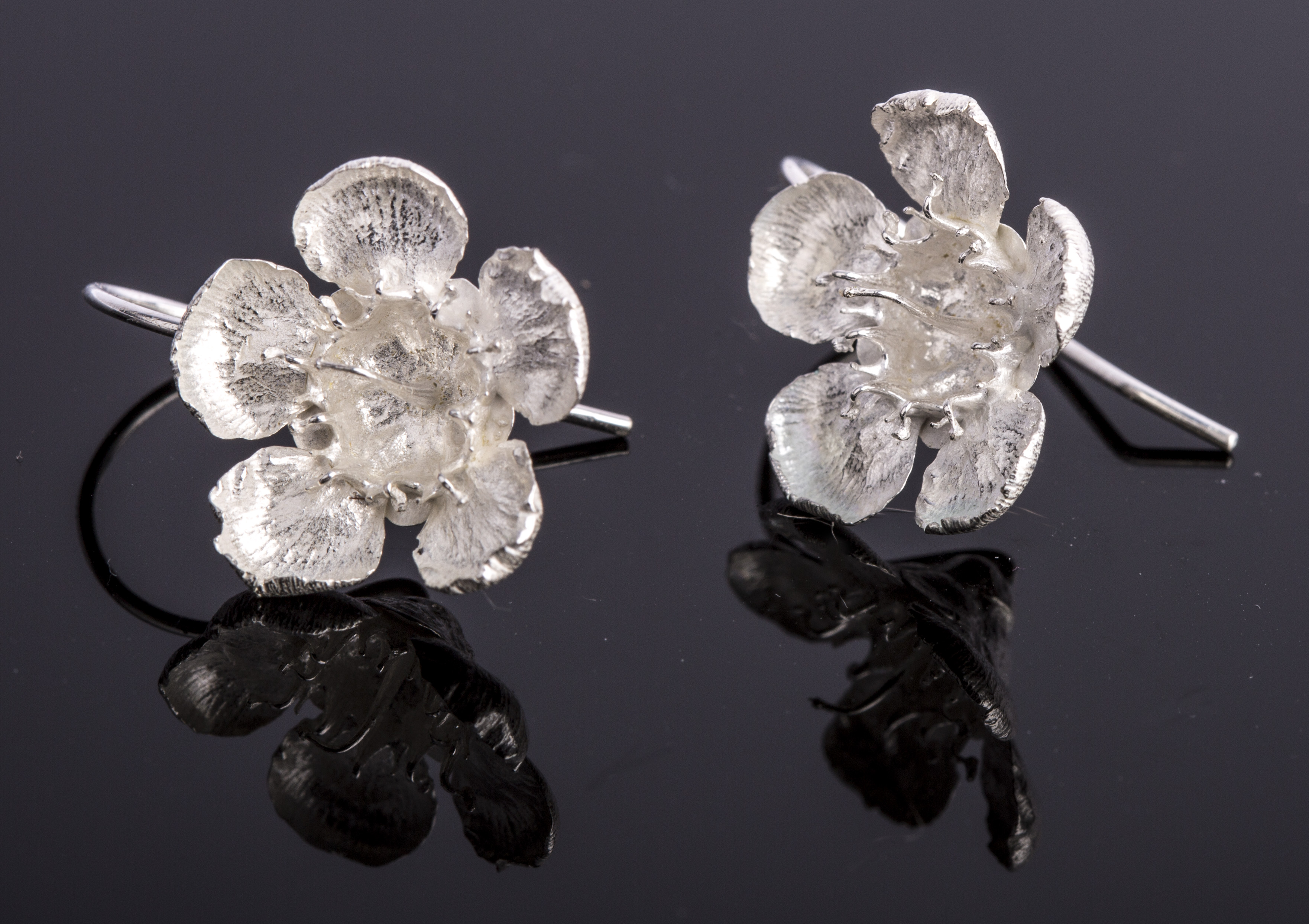 Geraldton Wax Flower Drop Earrings