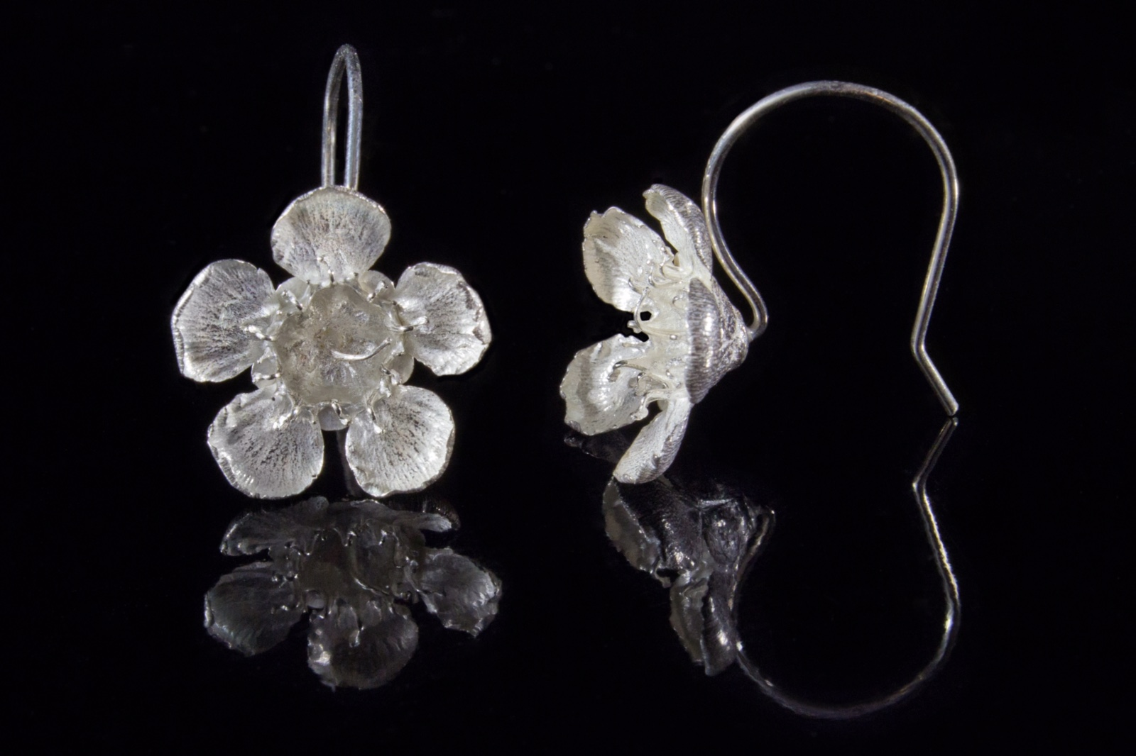 Geraldton wax drop earrings
