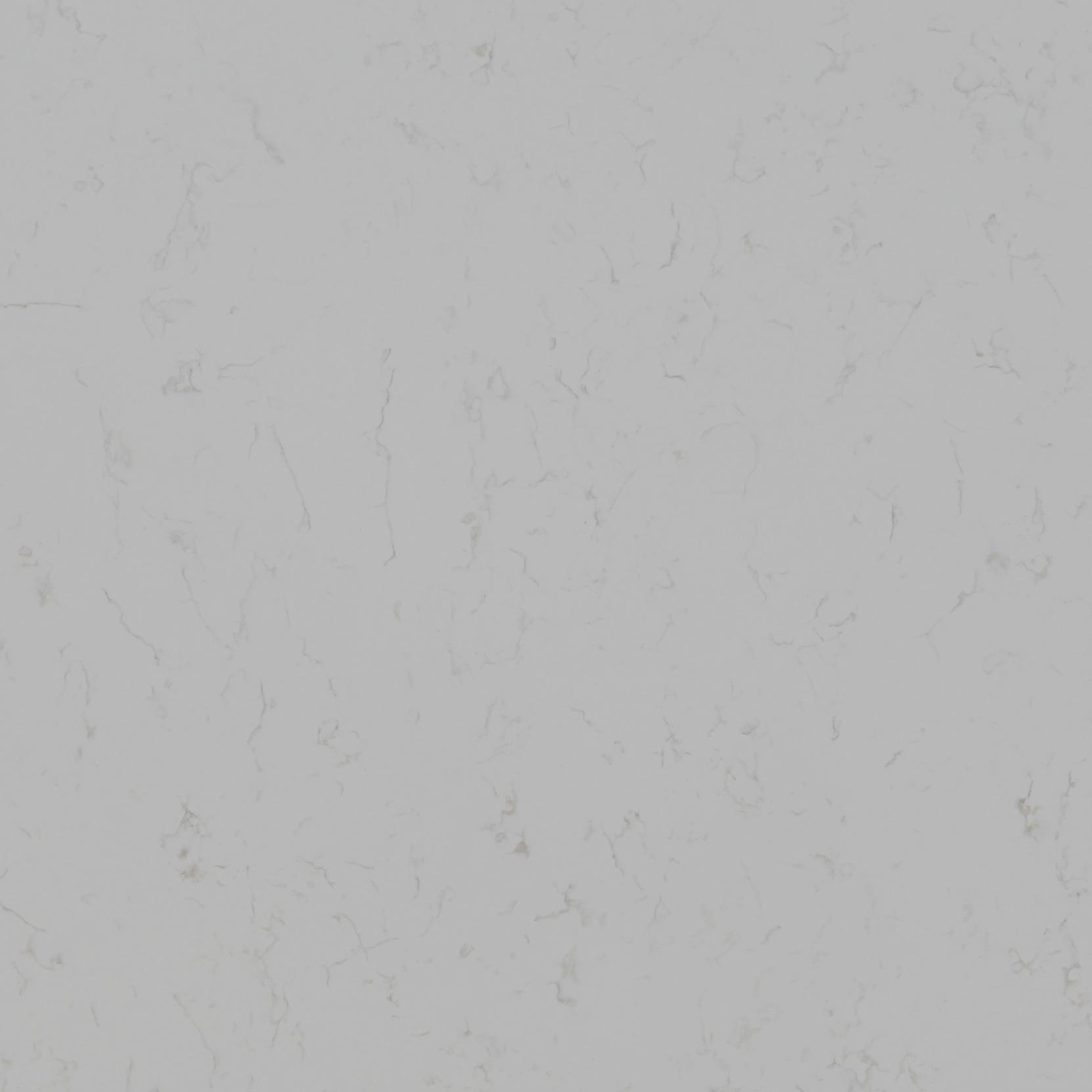 Carrara BQ8220 zoom.jpg