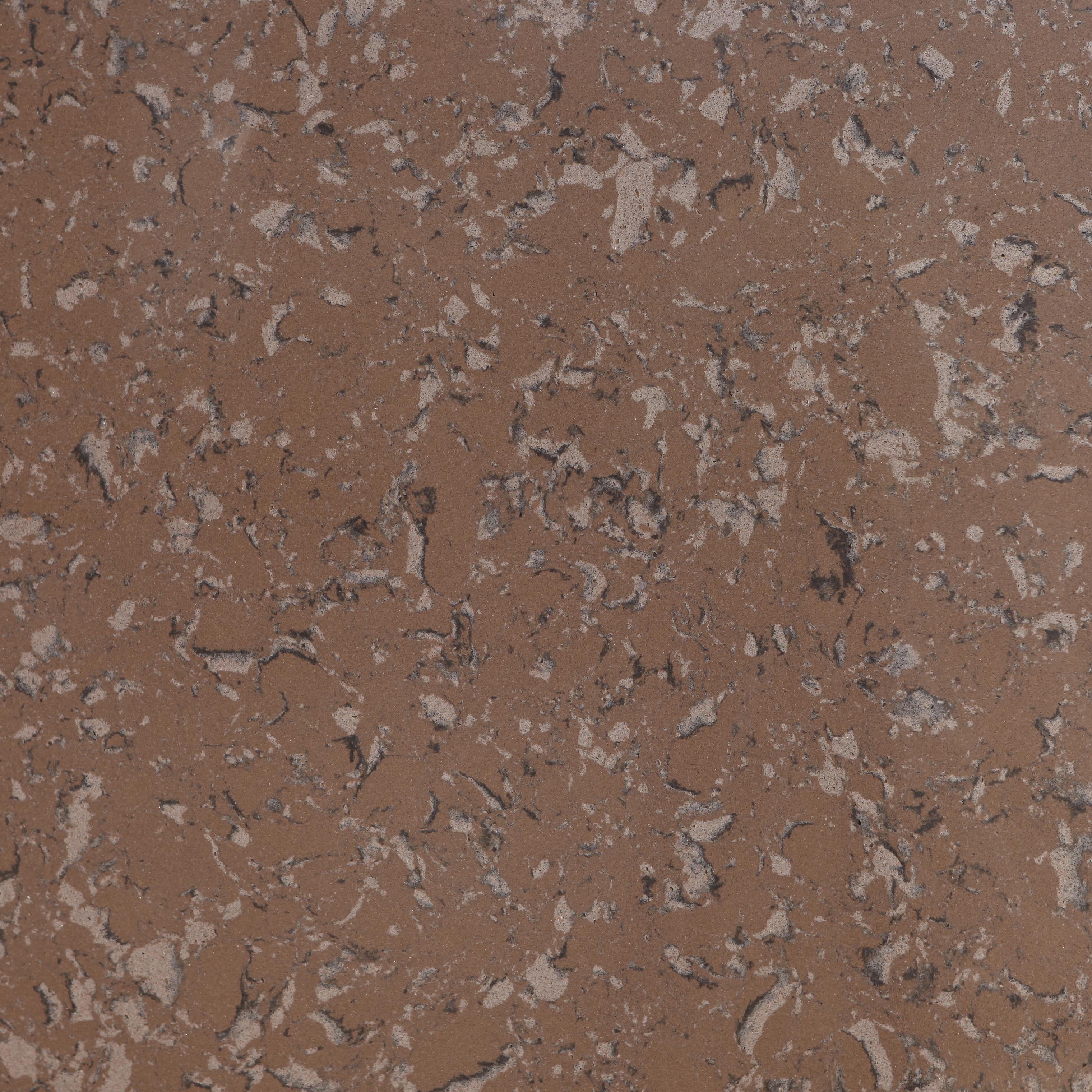Titanium Brown BQ9360 zoom.JPG