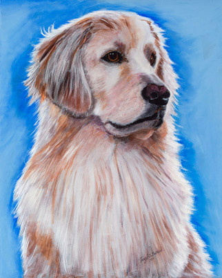 """Berklee"" - Golden Retriever"