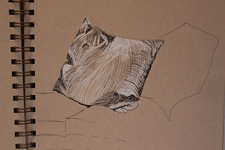Cushion - pen and chalk.JPG