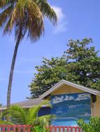 Carriacou - Paradise island