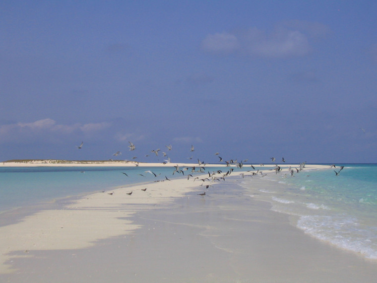 Eritrea - Dahlak islands in the Red Sea