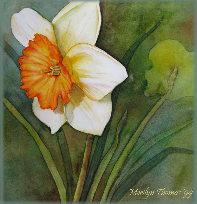 Daffodil in Watercolour.jpg