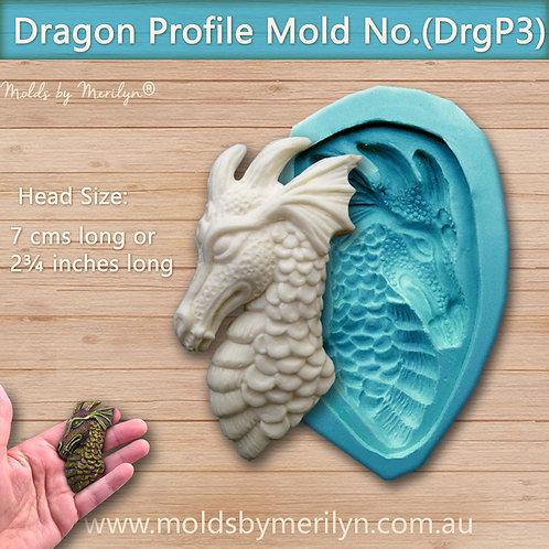 DrgP3 -Profile dragon head mold