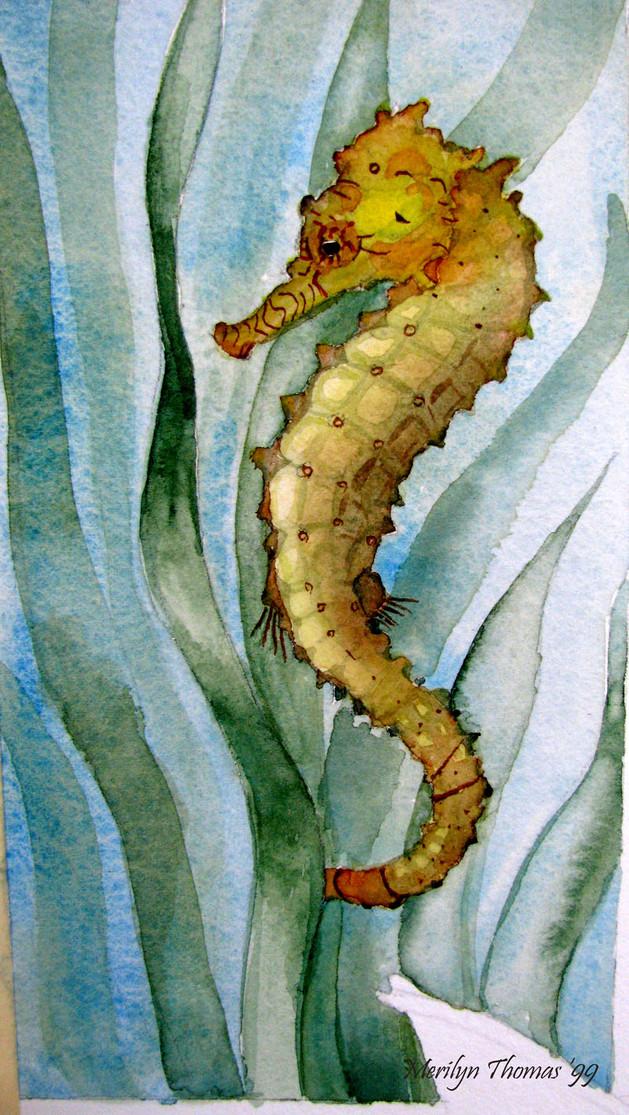 Seahorse Watercolour.jpg