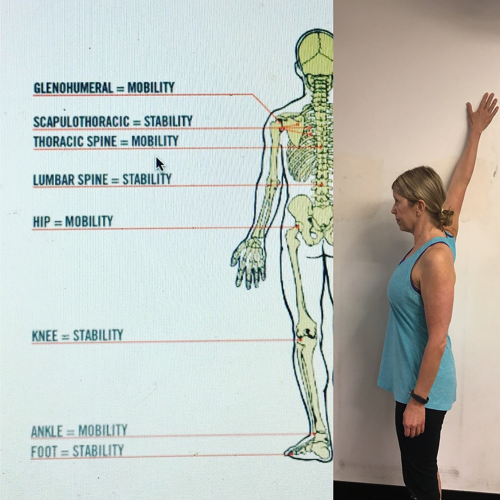 Client demonstrates Shoulder Opener and Diagram of Human Kinectic Movement.