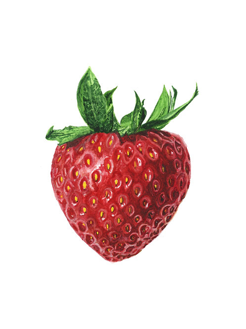 Strawberry watercolour Giclee Print