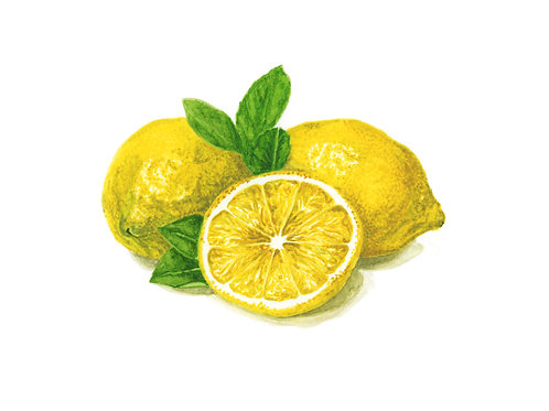 Lemon watercolour Giclee Print