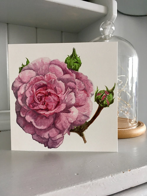 Watercolour rose card
