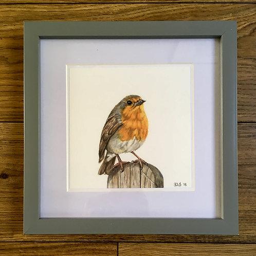 Robin on a fence - Framed mini print