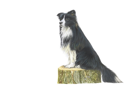 Man's Best Friend - Coloured pencil Giclee Print