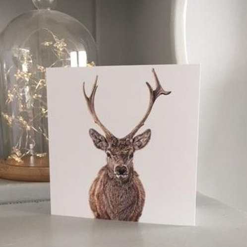Stag - greeting card
