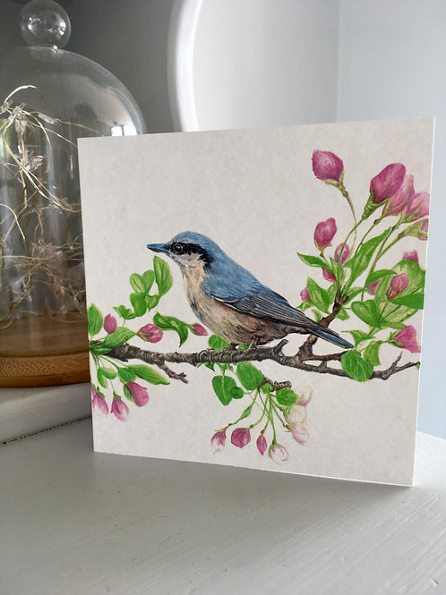 Nuthatch and flowers Greetings Card