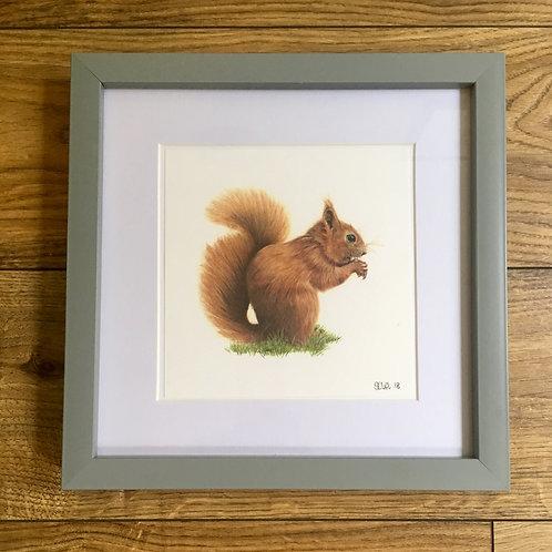 'Nutkin' - Framed mini print