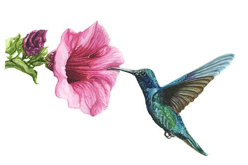 Hummingbird in flight - Watercolour original