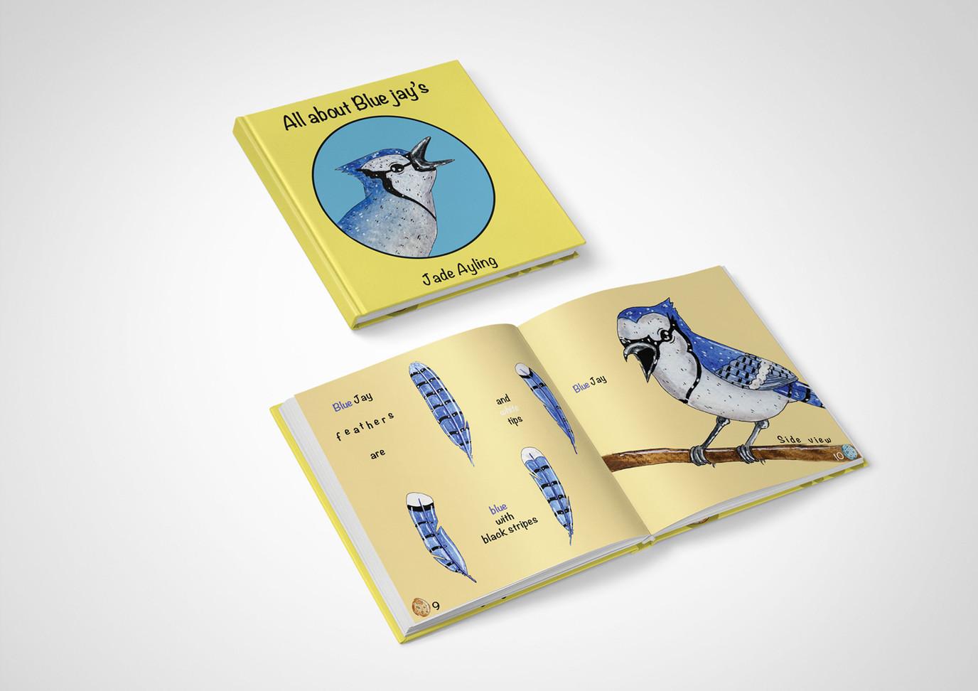 bird book 3.jpg