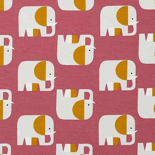 Organic   Elephant Raspberry