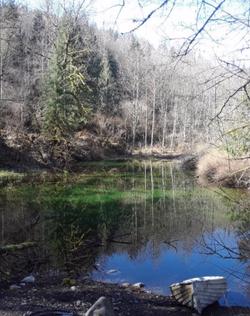 Pond - beautiful colors