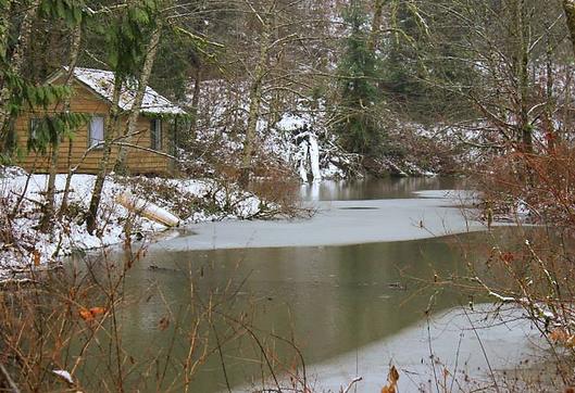 cabin_river_lake.png