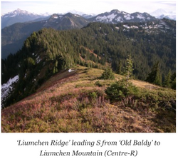 Liumchen Ridge