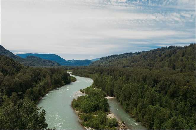 Drone shot of river.png