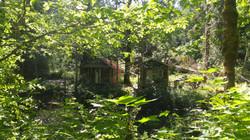 Cabin 1 & 3