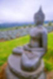 buddha idol god on kula maui