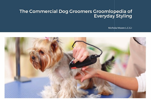 Groomlopedia of everyday styling