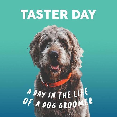 Dog Grooming Taster Lesson