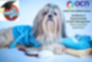 smartpets certificate dog grooming.png