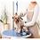 Thumbnail: OCN LEVEL 3 DIPLOMA IN COMMERICAL DOG GROOMING