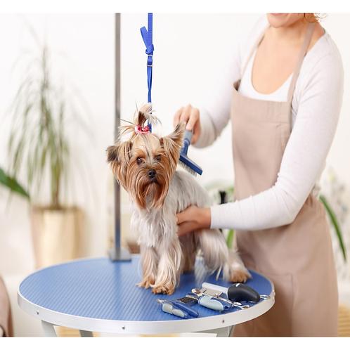 OCN LEVEL 3 DIPLOMA IN COMMERICAL DOG GROOMING