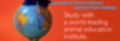 smartpets world.png
