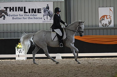 Kirby Park Irish Janie - Dressage with A