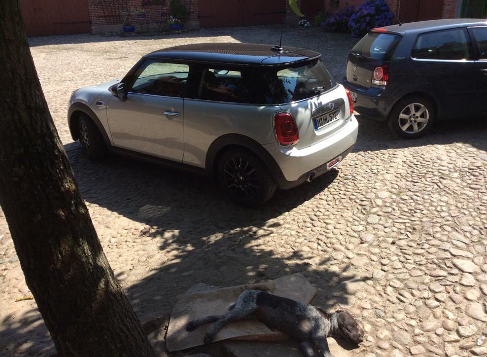 Our very cool Mini!