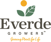 Everde-Logo-with-Tagline-140.png