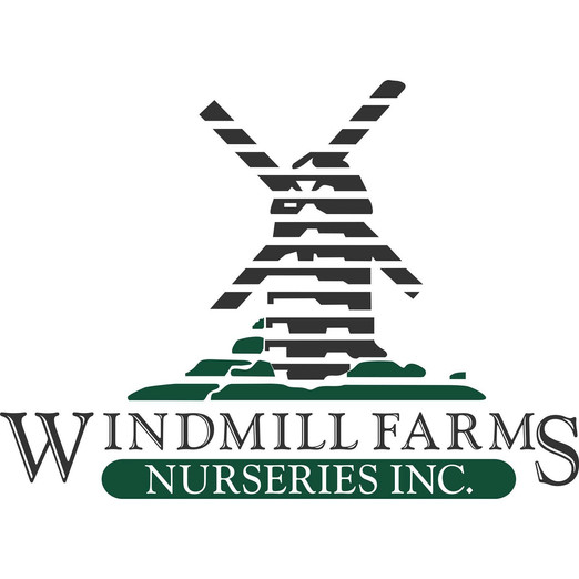 windmill farms.jpg