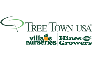 TreeTown.png