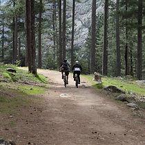 sport nature_9534.jpg