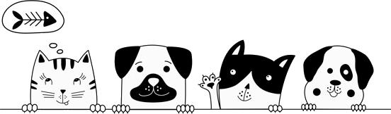 gatti e cani.png